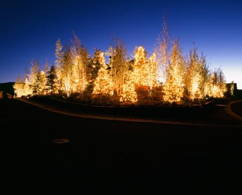 HOA Tree lighting in park city