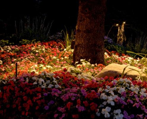 Brite Nites landscape lighting