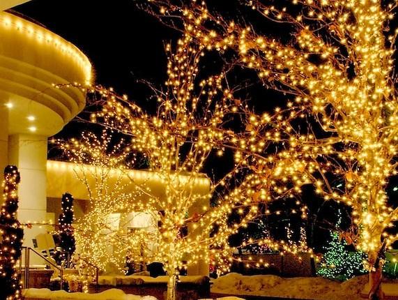 Premium Home Christmas Light Professionals