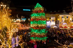 The Gateway Christmas tree lights up the night with Brite Nites