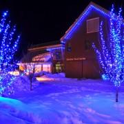 Christmas Lights | Northern Utah | Professional