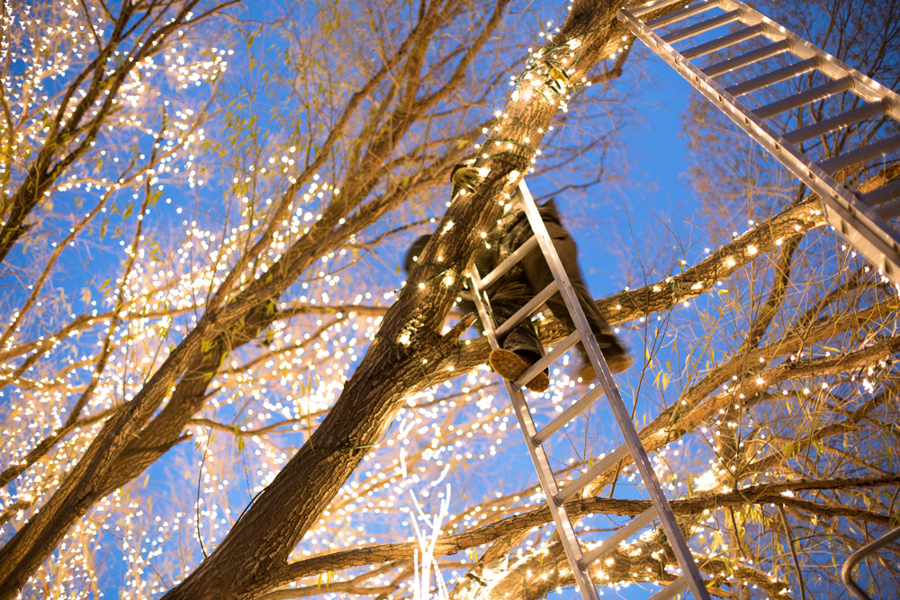 Commercial Christmas lights
