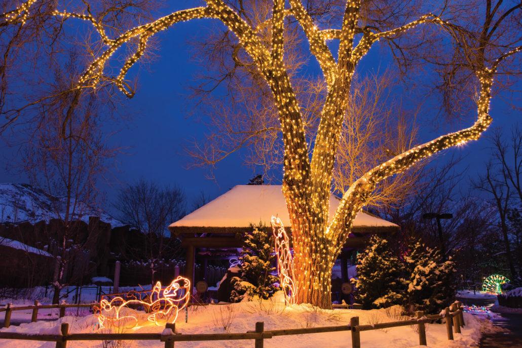 Hogle Zoo Lights