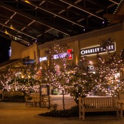 Brite Nites Professional Christmas Lighting at Traverse Mountain