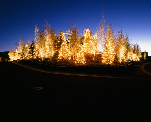 HOA Tree lighting in park city