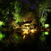 Brite Nites landscape lighting | uplights