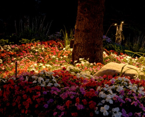 Brite Nites landscape lighting