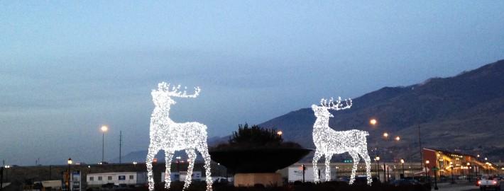Premium Commercial Grade Christmas lighting Station Park