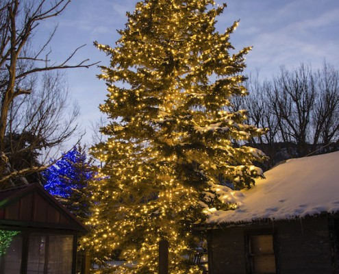 Brite Nites Professional Holiday and Outdoor Lighting