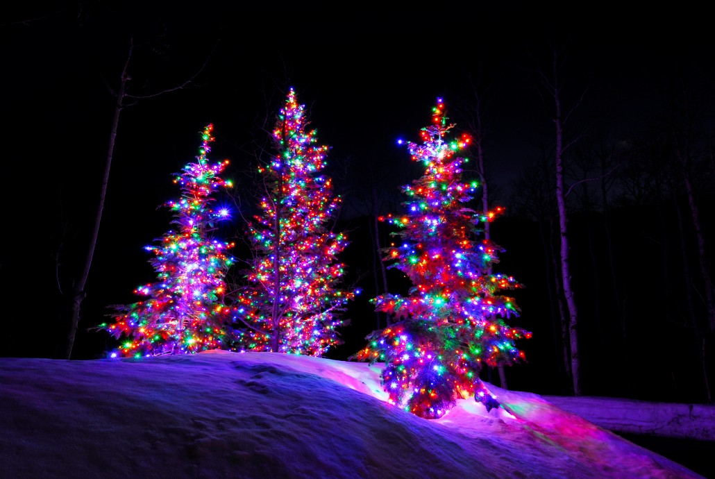 Multi Color Christmas Trees Lights