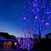 Amazing Christmas Lights for your home