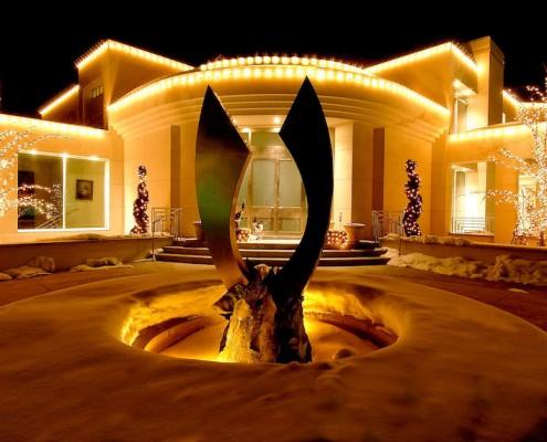 Professional Christmas Light Designs