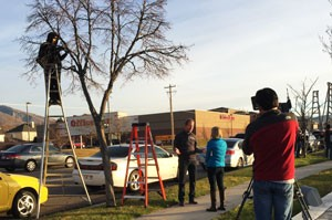 Draper City tree becomes 'Tree of Life' for residents