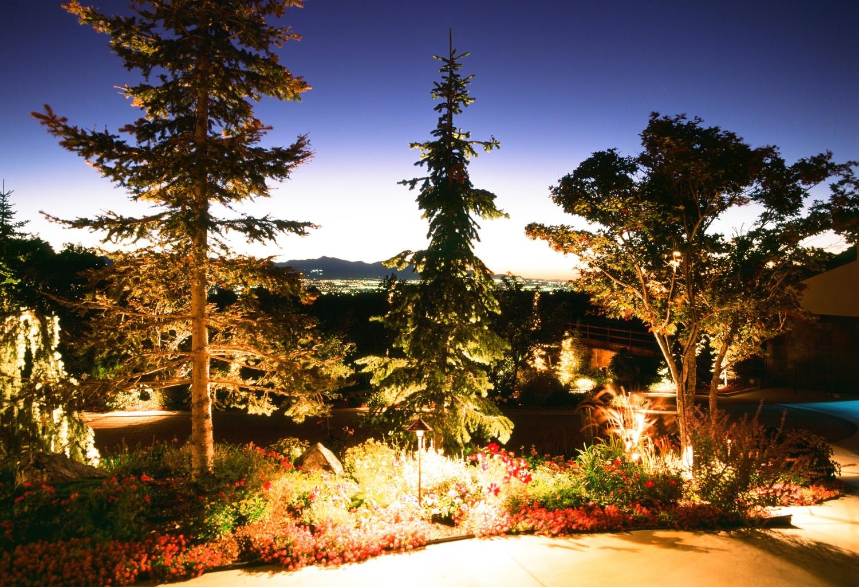 landscape lighting park city trees
