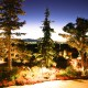 landscape lighting park city trees