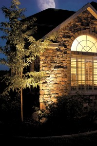 Wall Landscape Lighting | Brite Nites | Salt lake City