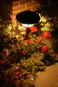 Pathway Landscape Lighting - Brite Nites