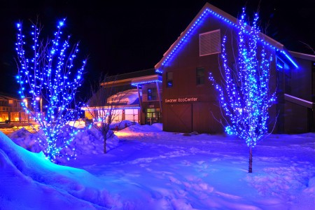 Christmas Lights | Northern Utah | Professional