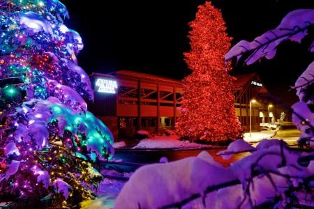Brite Nites | Jess Reid Tree | Park City, UT