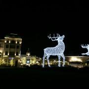 Large lit reindeer